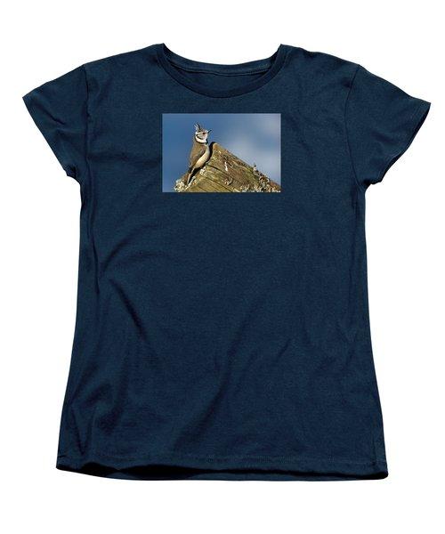 On The Edge Women's T-Shirt (Standard Cut) by Torbjorn Swenelius