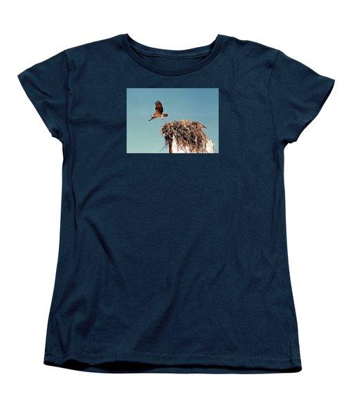 Osprey Women's T-Shirt (Standard Cut) by Phyllis Kaltenbach