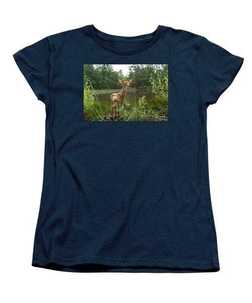 Paradise Found Women's T-Shirt (Standard Cut) by Bill Stephens