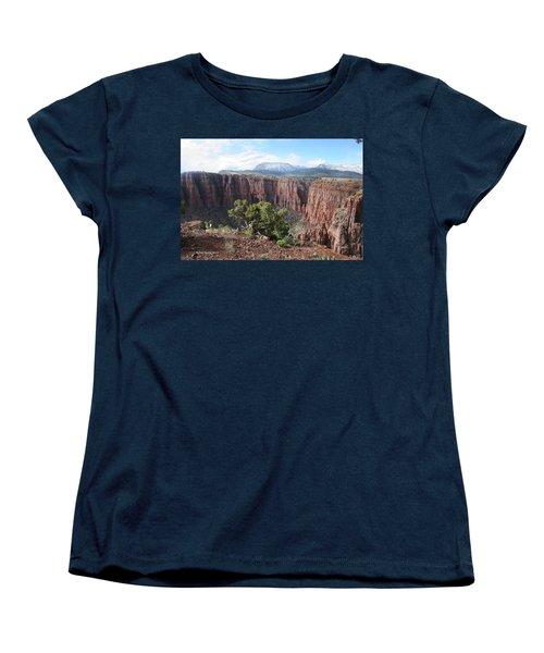 Parker Canyon In The Sierra Ancha Arizona Women's T-Shirt (Standard Cut) by Tom Janca