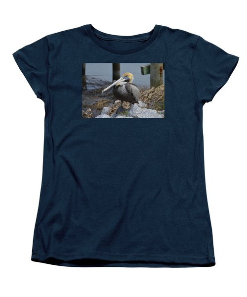 Pelican On Rocks Women's T-Shirt (Standard Cut) by Judith Morris