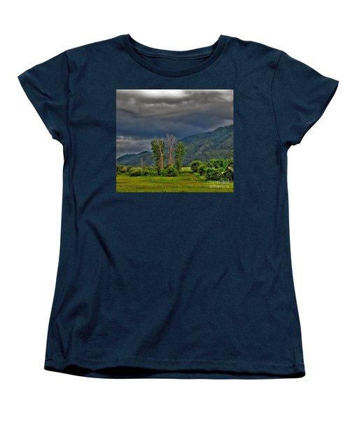 Women's T-Shirt (Standard Cut) featuring the photograph Petes Trees by Sam Rosen