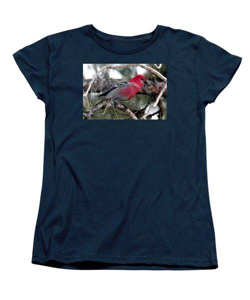 Pine Grosbeak On Ponderosa Pine Tree Women's T-Shirt (Standard Cut) by Marilyn Burton