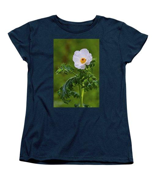 Prickly Poppy Women's T-Shirt (Standard Cut) by Gary Holmes