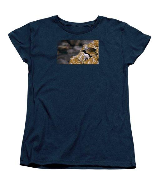 Razorbill Bird Women's T-Shirt (Standard Cut) by Dreamland Media