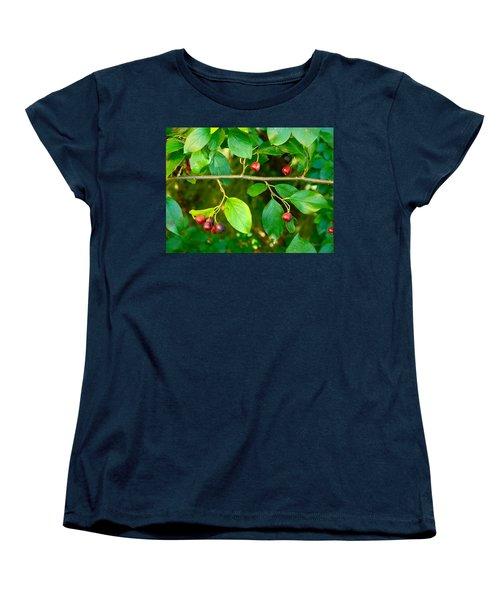Red And Black Berries Women's T-Shirt (Standard Cut) by Johanna Bruwer