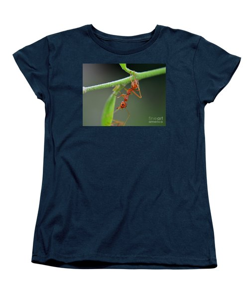 Red Ant Women's T-Shirt (Standard Cut) by Michelle Meenawong