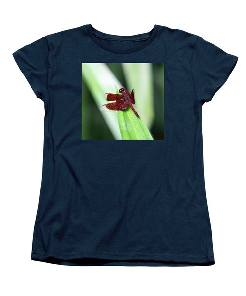 Women's T-Shirt (Standard Cut) featuring the photograph Red Dragon by Shoal Hollingsworth