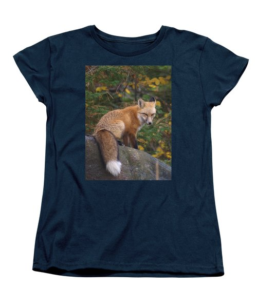 Women's T-Shirt (Standard Cut) featuring the photograph Red Fox by James Peterson