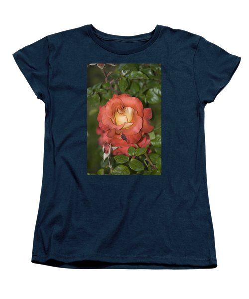 Rose 6 Women's T-Shirt (Standard Cut) by Andy Shomock