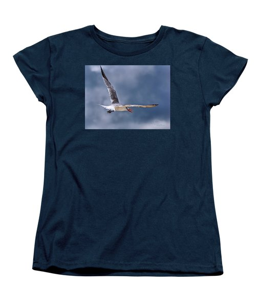 Royal Tern 1 Women's T-Shirt (Standard Cut) by Ludwig Keck