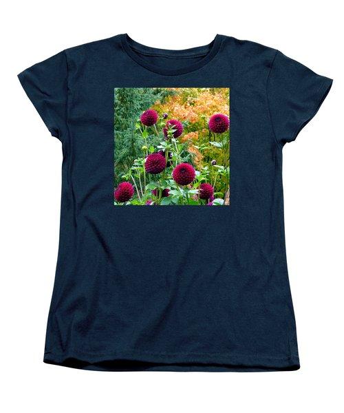 Scenic Minnesota 9 Women's T-Shirt (Standard Cut) by Will Borden