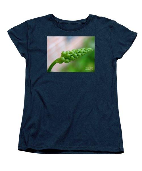 Seed Pod Women's T-Shirt (Standard Cut) by Patti Whitten