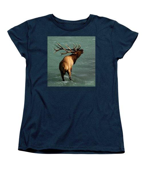 Sending A Challenge Women's T-Shirt (Standard Cut) by Vivian Christopher