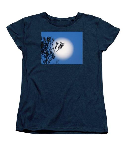 Women's T-Shirt (Standard Cut) featuring the photograph Silver Sage by Jim Garrison