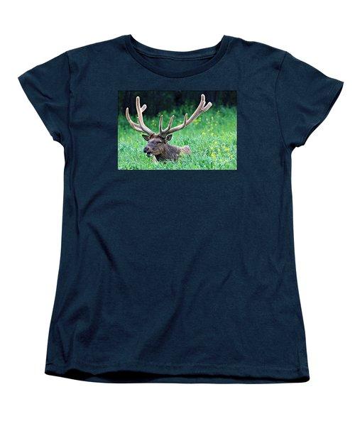 Singing In The Rain Women's T-Shirt (Standard Cut) by Elizabeth Winter