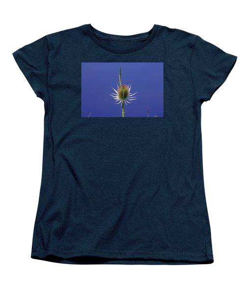 Single Teasel Women's T-Shirt (Standard Cut) by Tony Murtagh