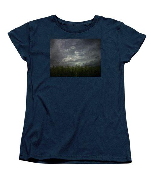 Sky With Cornfield Women's T-Shirt (Standard Cut)