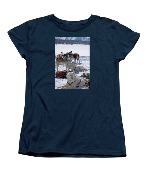Sled Dogs Women's T-Shirt (Standard Cut) by Duncan Selby