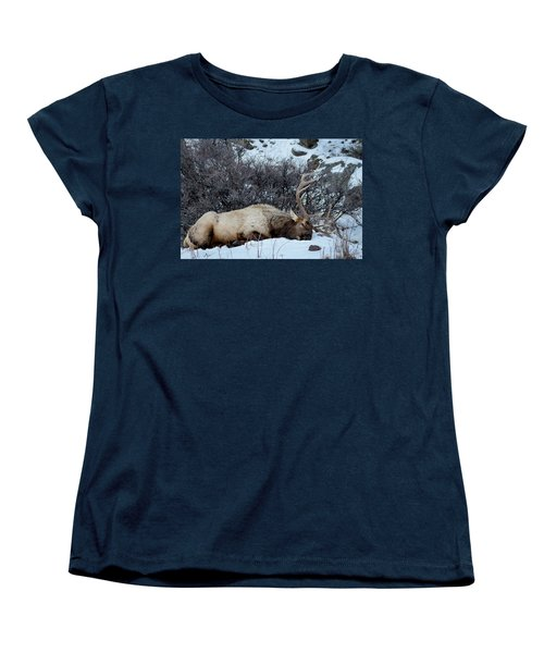 Sleeping Elk Women's T-Shirt (Standard Cut)