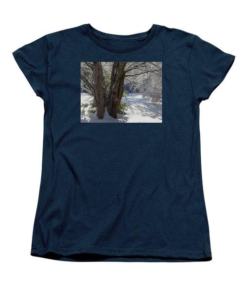 Snow Sparkles Women's T-Shirt (Standard Cut) by Dianne Cowen