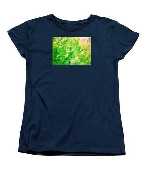 Spring Cypress Beauty Women's T-Shirt (Standard Cut) by Belinda Lee