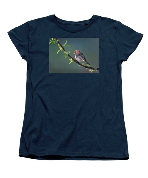Women's T-Shirt (Standard Cut) featuring the photograph Song Bird In Spring by Nava Thompson
