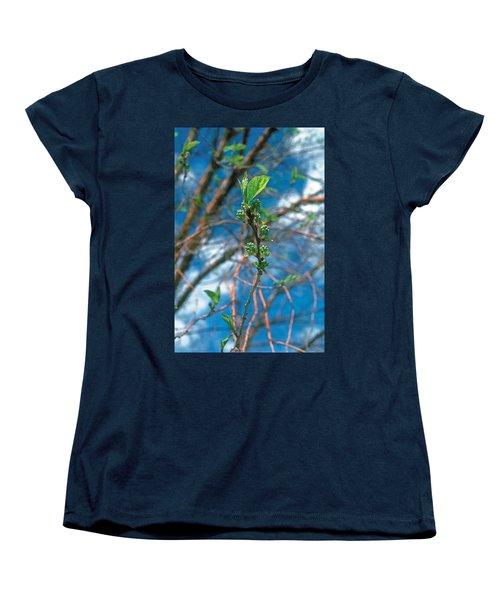 Spring Women's T-Shirt (Standard Cut) by Terry Reynoldson