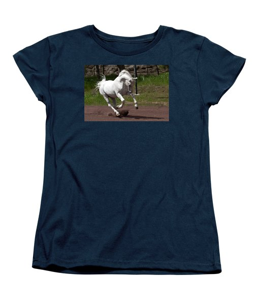 Stallion Women's T-Shirt (Standard Cut) by Wes and Dotty Weber