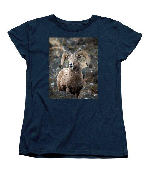 Startled Ram Women's T-Shirt (Standard Cut) by Steve McKinzie