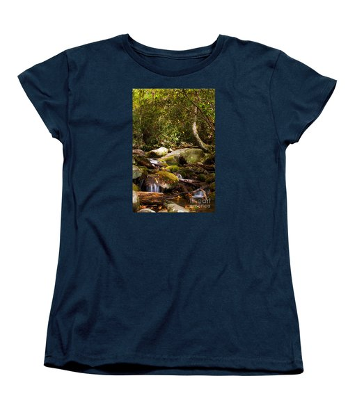 Stream At Roaring Fork Women's T-Shirt (Standard Cut) by Lena Auxier