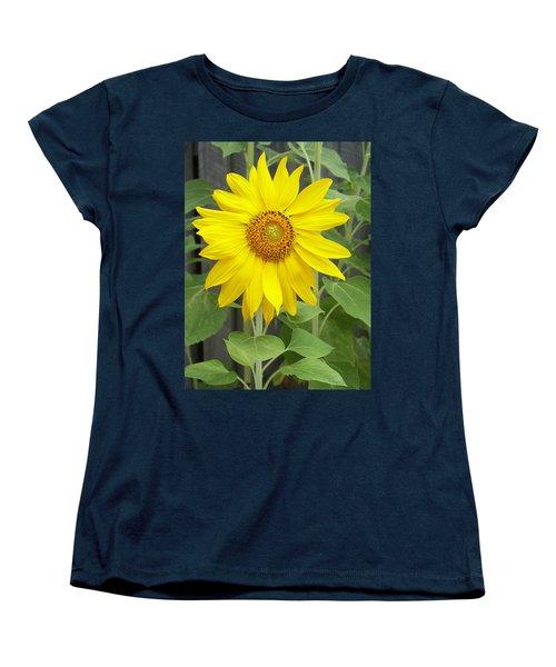 Sunflower Women's T-Shirt (Standard Cut) by Lisa Phillips