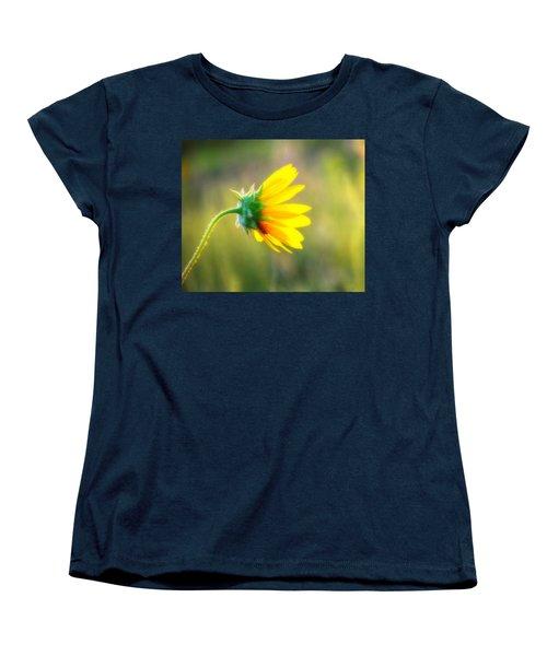 Sunflower Sunrise 6 Women's T-Shirt (Standard Cut) by Diane Alexander