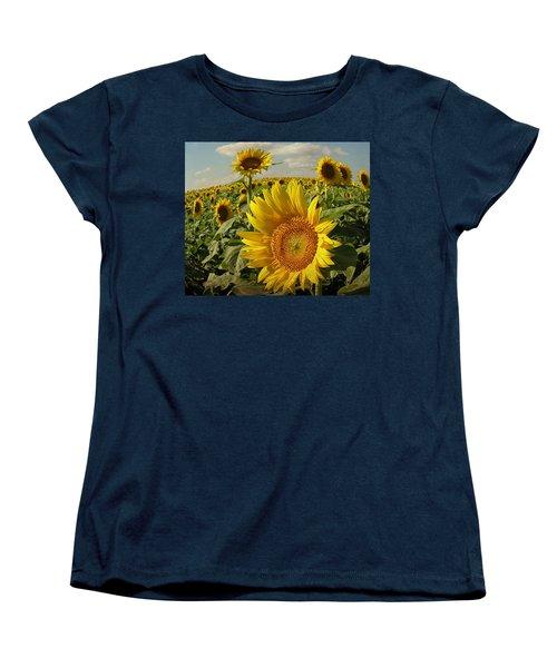 Kansas Sunflowers Women's T-Shirt (Standard Cut) by Chris Berry