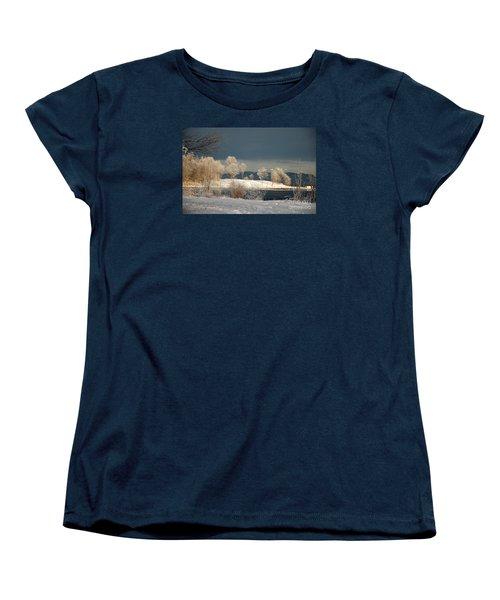 Women's T-Shirt (Standard Cut) featuring the photograph Swans On A Frosty Day by Randi Grace Nilsberg
