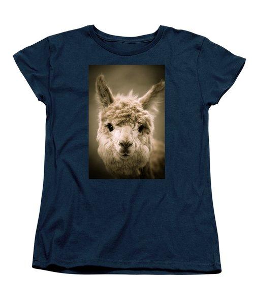 Sweet Alpaca Women's T-Shirt (Standard Cut) by Shane Holsclaw