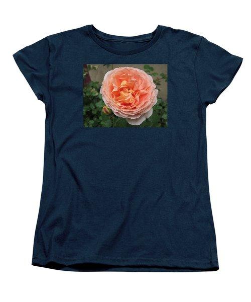 Women's T-Shirt (Standard Cut) featuring the photograph Sweet Rhapsody by Pema Hou