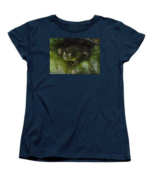 The Frog Women's T-Shirt (Standard Cut) by Verana Stark