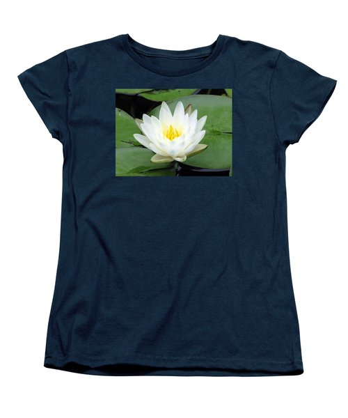 Women's T-Shirt (Standard Cut) featuring the photograph The Water Lilies Collection - 04 by Pamela Critchlow