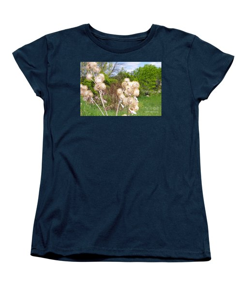 Thistle Me This Women's T-Shirt (Standard Cut) by Mary Mikawoz