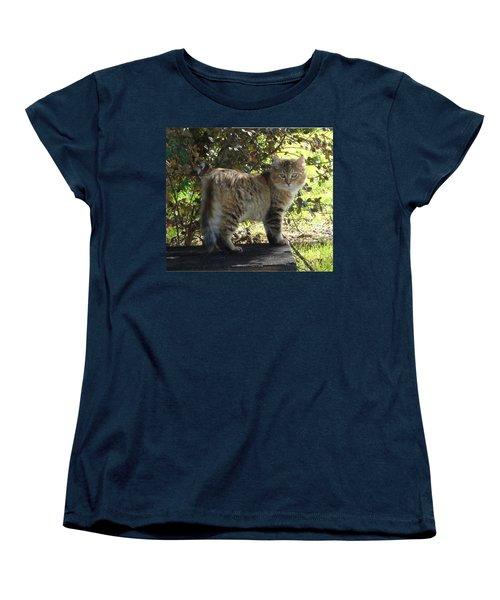 Timber The Kitten Women's T-Shirt (Standard Cut) by Barbie Batson