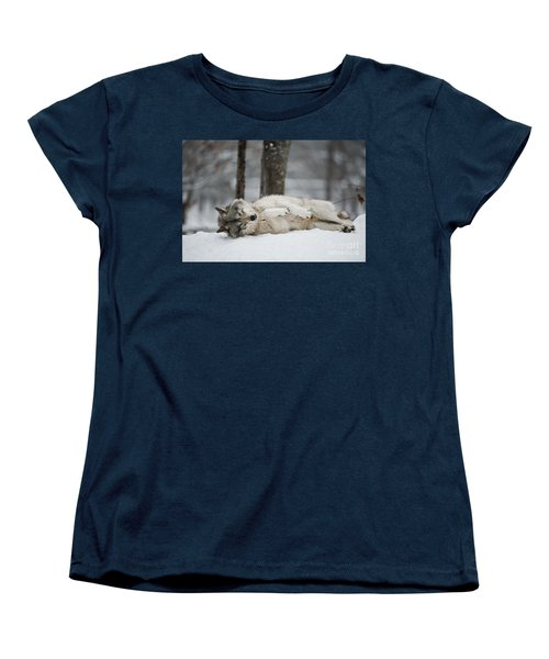 Timber Wolf In Winter Women's T-Shirt (Standard Cut) by Wolves Only