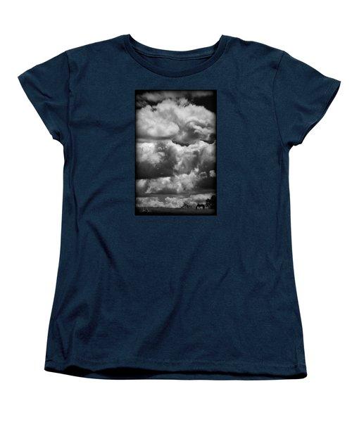 Women's T-Shirt (Standard Cut) featuring the photograph Top Of The World by Joan Davis