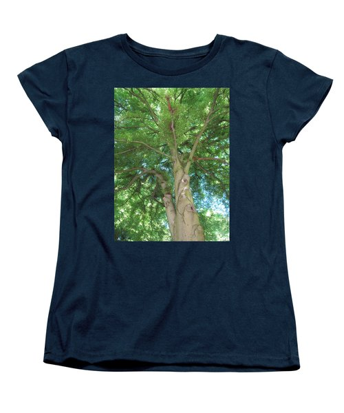 Women's T-Shirt (Standard Cut) featuring the photograph Towering Tree by Pema Hou