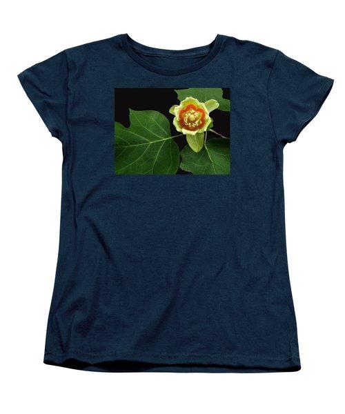 Tulip Bloom Women's T-Shirt (Standard Cut) by Don Spenner