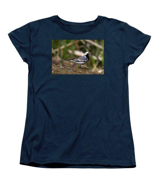 Wagtail's Step Women's T-Shirt (Standard Cut) by Torbjorn Swenelius