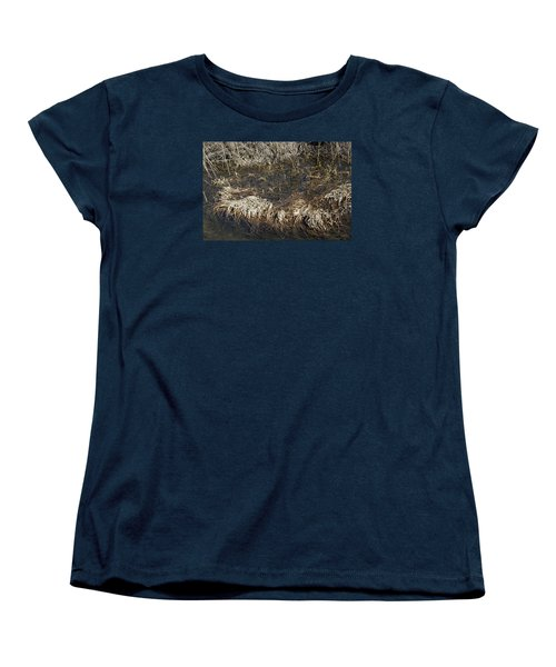 Women's T-Shirt (Standard Cut) featuring the photograph Dried Grass In The Water by Teo SITCHET-KANDA