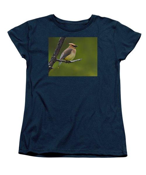 Wax On Women's T-Shirt (Standard Cut) by Tony Beck