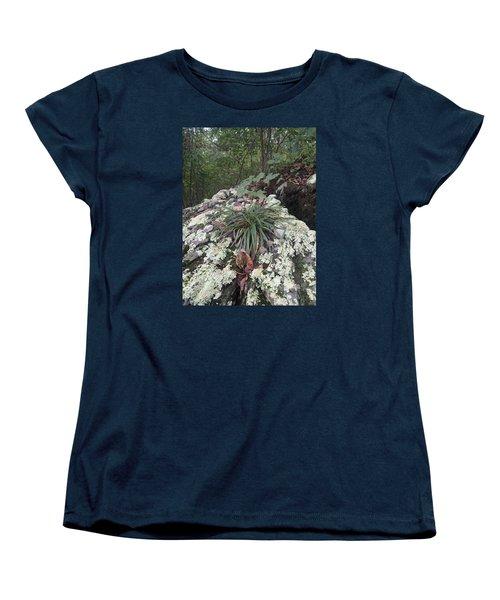 White Lichen Women's T-Shirt (Standard Cut) by Robert Nickologianis