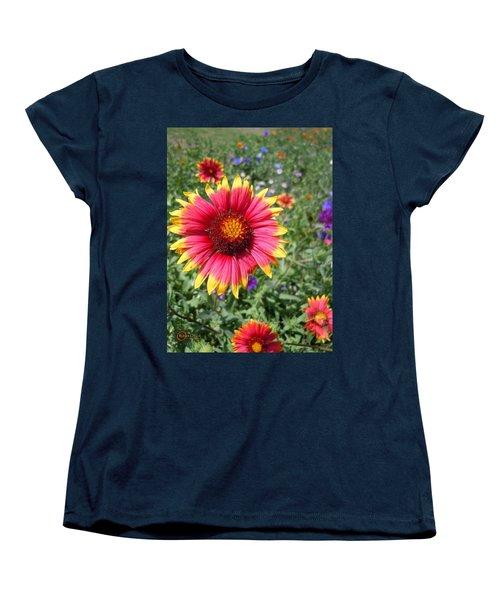 Women's T-Shirt (Standard Cut) featuring the photograph Wild Red Daisy #1 by Robert ONeil